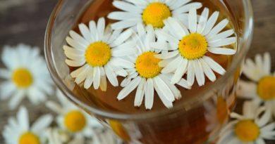 rumianek - herbatka z rumiankiem